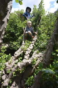 "Boys in their ""tree house"" at the Cumberland river."