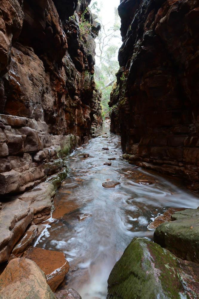Alligator Gorge, Mt Remarkable NP